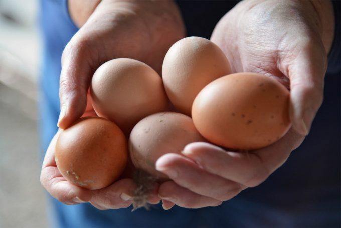 10 cosas sobre el huevo que quizá no sabías